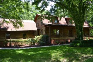 315  Ballentine Estates Road  , Irmo, SC 29063 (MLS #369664) :: Exit Real Estate Consultants