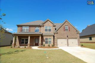 231  Pink Camellia Drive  , Lexington, SC 29072 (MLS #369716) :: Exit Real Estate Consultants