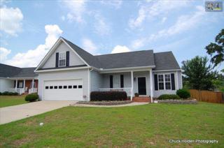 108  Raspberry Hill Court  , Lexington, SC 29073 (MLS #369779) :: Exit Real Estate Consultants