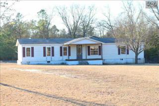 225  Willie Wilson Road  , Eastover, SC 29044 (MLS #369780) :: Exit Real Estate Consultants