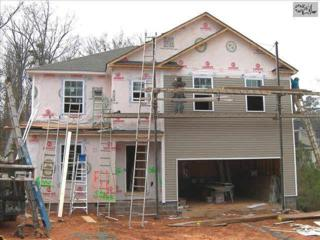 201  Stonemont Drive  , Irmo, SC 29063 (MLS #369801) :: Exit Real Estate Consultants