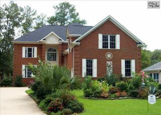 822 E Island Run  , Chapin, SC 29036 (MLS #369812) :: Exit Real Estate Consultants