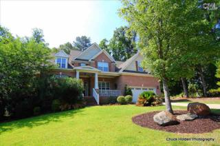 429  Lookover Pointe Drive  , Chapin, SC 29036 (MLS #369830) :: Exit Real Estate Consultants