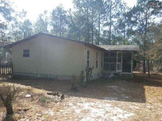 1641  Westover Acres Lane  , Lugoff, SC 29078 (MLS #369894) :: Exit Real Estate Consultants