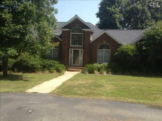 1420  Loner Road  , Blythewood, SC 29016 (MLS #369899) :: Exit Real Estate Consultants