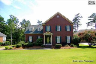 221  Lookout Pointes Drive  , Chapin, SC 29036 (MLS #369911) :: Exit Real Estate Consultants
