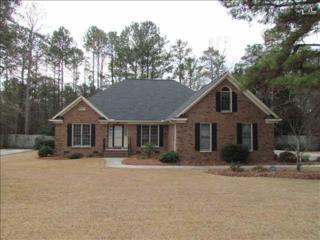 228  Rose Creek Lane  , Columbia, SC 29229 (MLS #369942) :: Exit Real Estate Consultants