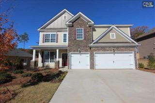 11  Rainbows End Court  0077, Irmo, SC 29063 (MLS #370047) :: Exit Real Estate Consultants