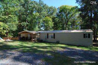 300  Waterfront Row  , Prosperity, SC 29127 (MLS #370086) :: Exit Real Estate Consultants