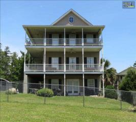 415  Rocky Ramp Drive  , Chapin, SC 29036 (MLS #370093) :: Exit Real Estate Consultants