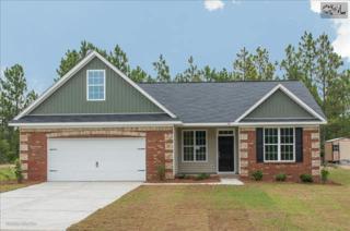 136  Crassula Drive  70, Lexington, SC 29073 (MLS #370094) :: Exit Real Estate Consultants