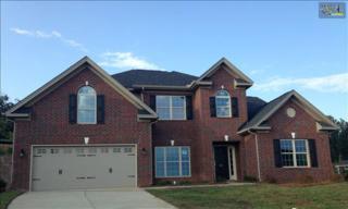 201  Indigo Hills Drive  22, Chapin, SC 29036 (MLS #370097) :: Exit Real Estate Consultants