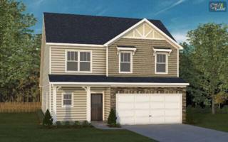 279  Penwood Lane  149, Lexington, SC 29072 (MLS #370099) :: Exit Real Estate Consultants