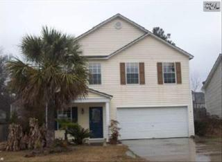 117  Wingspan Way  , Chapin, SC 29036 (MLS #370100) :: Exit Real Estate Consultants