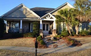 116  Vista Springs Avenue  , Lexington, SC 29072 (MLS #370121) :: Exit Real Estate Consultants