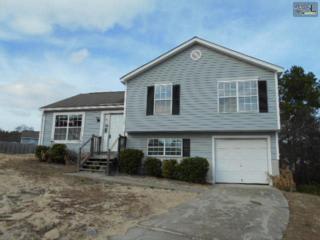 118  Vineyard Court  , West Columbia, SC 29170 (MLS #370139) :: Exit Real Estate Consultants