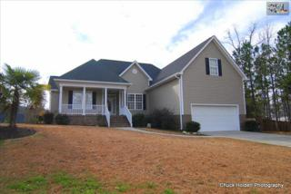 104  Millrace Court  , Chapin, SC 29036 (MLS #370152) :: Exit Real Estate Consultants