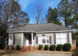 109  Riverwalk Court  , Irmo, SC 29063 (MLS #370186) :: Exit Real Estate Consultants