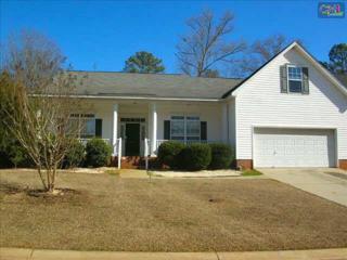 209  Saints Creek Lane  , Irmo, SC 29063 (MLS #370227) :: Exit Real Estate Consultants