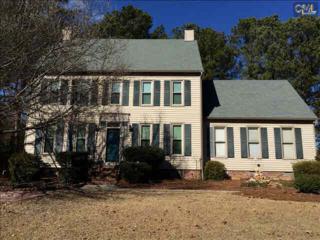 237  Rose Creek Lane  , Columbia, SC 29229 (MLS #370251) :: Exit Real Estate Consultants