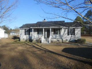 227  Kyzer Road  , Lexington, SC 29073 (MLS #370272) :: Exit Real Estate Consultants