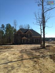 321  Grey Fox Court  4, Gilbert, SC 29054 (MLS #370782) :: Exit Real Estate Consultants