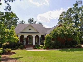 124  Land Stone Circle  , Irmo, SC 29063 (MLS #370935) :: Exit Real Estate Consultants