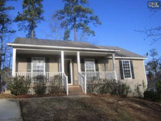 1  Someton Court  , Irmo, SC 29063 (MLS #371263) :: Exit Real Estate Consultants