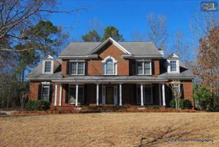 118  Land Stone Circle  , Irmo, SC 29063 (MLS #371350) :: Exit Real Estate Consultants