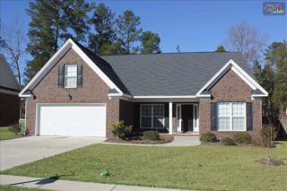322  Nichols Branch Lane  , Irmo, SC 29063 (MLS #371669) :: Exit Real Estate Consultants