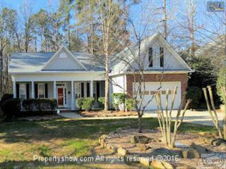 310  Coventry Lake Drive  , Lexington, SC 29072 (MLS #371713) :: Exit Real Estate Consultants
