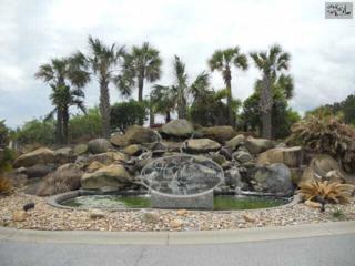 136  Sandlapper Way  , Lexington, SC 29072 (MLS #371793) :: Exit Real Estate Consultants