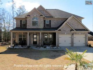 438  Flagstone Court  , Lexington, SC 29072 (MLS #371860) :: Exit Real Estate Consultants
