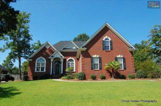 140  Pintail Lake Drive  , Gilbert, SC 29054 (MLS #371887) :: Exit Real Estate Consultants