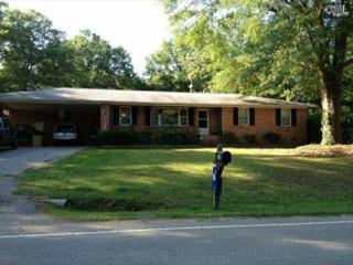1008  Old Tamah Road  , Irmo, SC 29063 (MLS #372060) :: Exit Real Estate Consultants