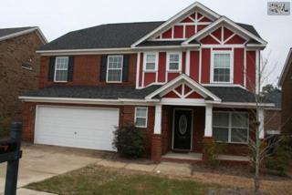 389  Hollingsworth Lane  , Lexington, SC 29072 (MLS #372064) :: Exit Real Estate Consultants