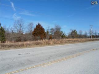 TBD  Augusta Highway  , Gilbert, SC 29054 (MLS #372088) :: Exit Real Estate Consultants