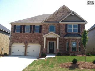 157  Grey Oaks Lane  25, Lexington, SC 29072 (MLS #372099) :: Exit Real Estate Consultants