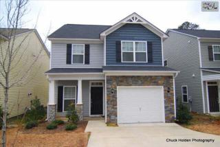 203  Stanley Court  , Lexington, SC 29073 (MLS #372128) :: Exit Real Estate Consultants