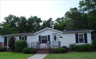 1214  Saint Johns Road  , Irmo, SC 29063 (MLS #372155) :: Exit Real Estate Consultants