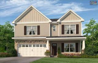 250  Garden Brooke Drive  43, Irmo, SC 29063 (MLS #372176) :: Exit Real Estate Consultants