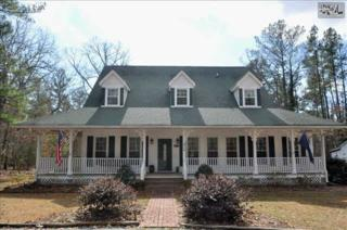 216  Hill Haven Road  , Chapin, SC 29036 (MLS #372179) :: Exit Real Estate Consultants