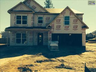 123  Castlefield Drive  , Lexington, SC 29073 (MLS #372180) :: Exit Real Estate Consultants