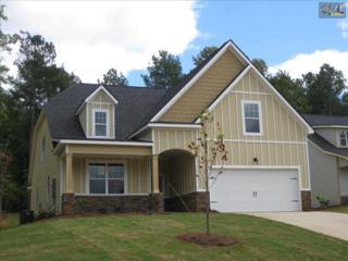 102  Honeybee Lane  72, Lexington, SC 29072 (MLS #372188) :: Exit Real Estate Consultants