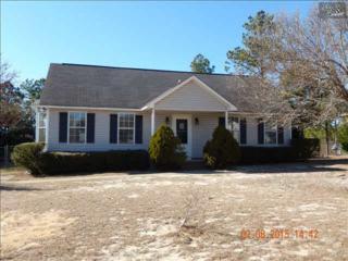 256  Transom Court  , Gaston, SC 29053 (MLS #372267) :: Exit Real Estate Consultants