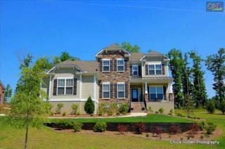 415  Plume Lane  , Blythewood, SC 29016 (MLS #372419) :: Exit Real Estate Consultants