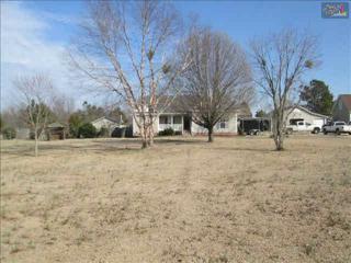 729  Cherry Blossom Road  , Gaston, SC 29053 (MLS #372447) :: Century 21   J. Bolos