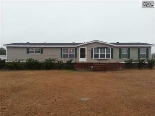 1162  Neal Road  , Hopkins, SC 29061 (MLS #372512) :: Exit Real Estate Consultants
