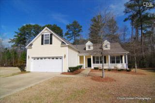 157  Mill Haven Lane  , Lexington, SC 29072 (MLS #372513) :: Exit Real Estate Consultants