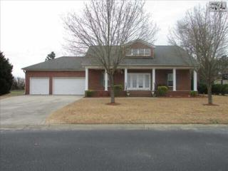 209  Whiteplains Court  , Gilbert, SC 29054 (MLS #372724) :: Exit Real Estate Consultants